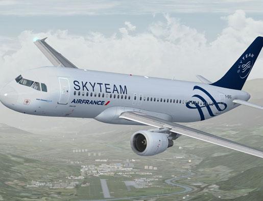 ポイントで無料旅行! skyteam1 スカイチーム加盟の日本の航空会社はない!運賃重視なら選ぶ価値あり! アライアンス