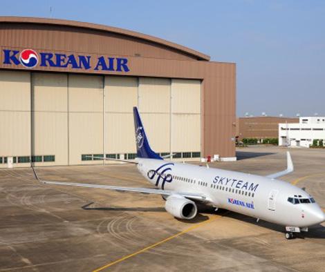 ポイントで無料旅行! skyteam4 スカイチーム加盟の日本の航空会社はない!運賃重視なら選ぶ価値あり! アライアンス