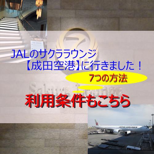 ポイントで無料旅行! サクララウンジアイキャッチ-1 JALのサクララウンジ【成田空港】に行きました!感無量!|7つの利用条件! JALについて