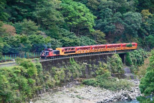 ポイントで無料旅行! トロッコ列車 京都の人気な高級ホテルに宿泊ならSPGアメックス!『翠嵐』がおすすめ 京都旅行