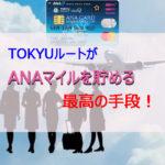 ポイントで無料旅行! TOKYUルート-150x150 TOKYUルートがANAマイルを貯める最高の手段! TOKYUカード